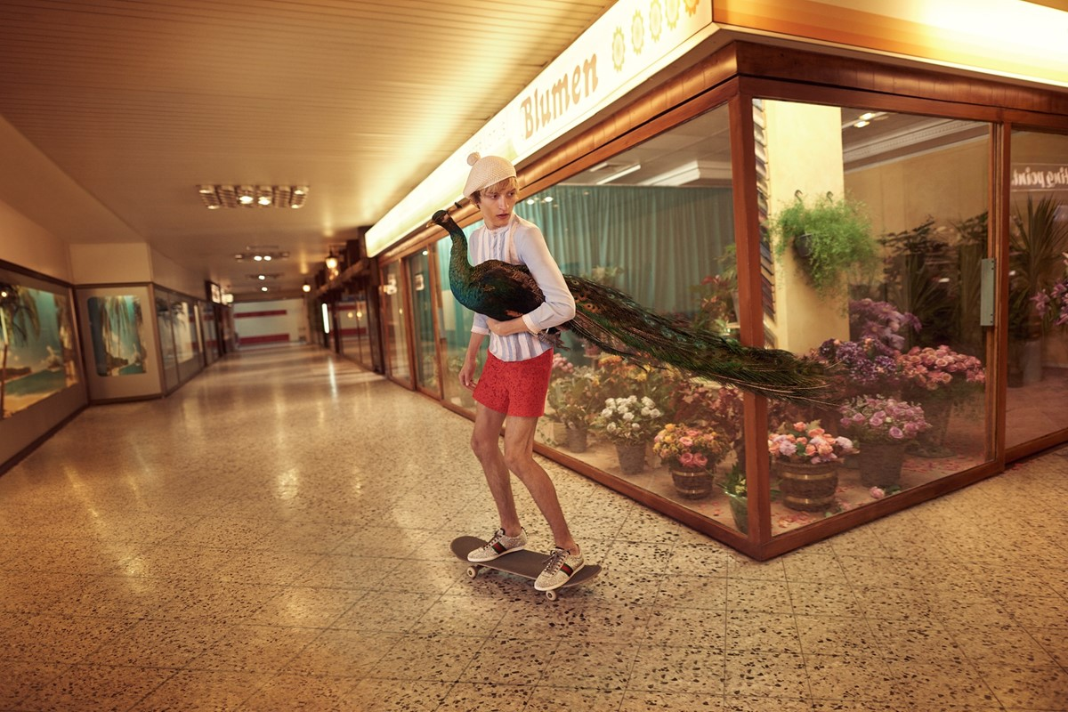Skateboarding Model Holds Peacock In Gucci S Ss16 Campaign