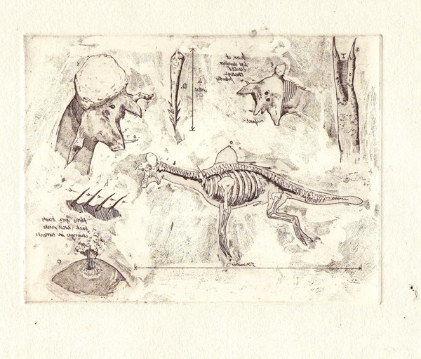 Anatomy of a sea monster in mirror- James Trimmer