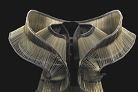 Iris van Herpen_Chemical Crows. Credit B. Oomes x