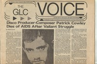VOICE ARTICLE1