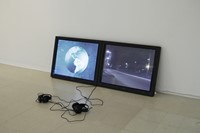 Aleksandra Domanovic, 19.30, RCA No one lives here