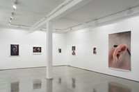 MP-installation view-2013-downstairs