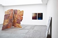 The Instability of the Image, installation view (3