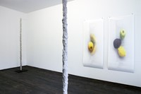 Anne de Vries (exhibition view)