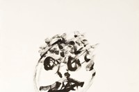 William S. Burroughs, 23, marker and gunshots on p