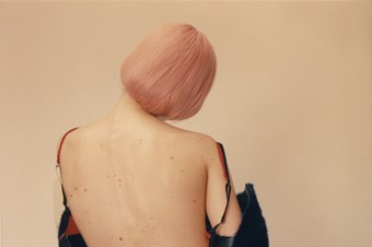 Photography by Harley Weir