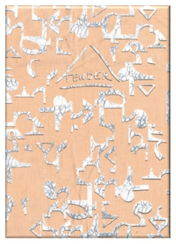 Front cover of Tender, Issue 1