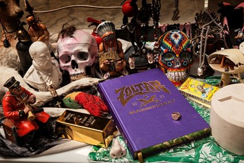 Project Zoltar (book img)