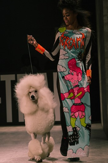 VFiles: DI$COUNT UNIVER$E AW15 poodle cartoon