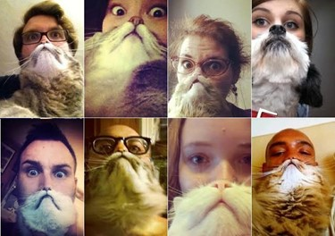animal-selfies