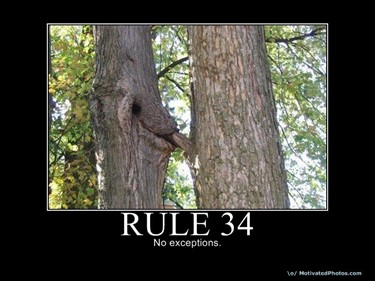 If it exists - Rule 34
