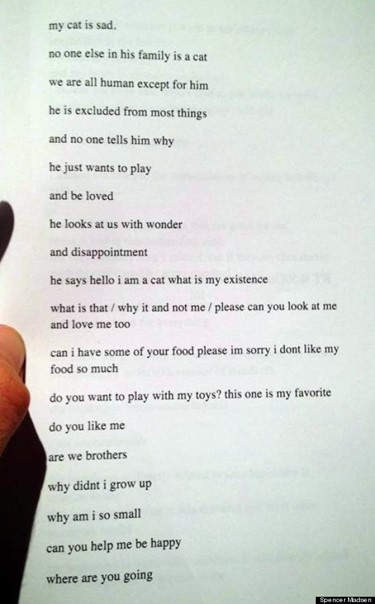 Spencer Madsen untitled poem about a cat