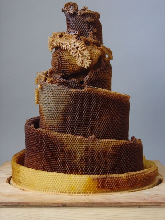 honeycomb sculpture