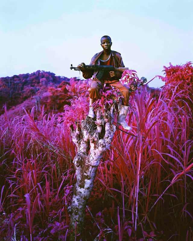 Richard Mosse_Higher Ground_Courtesy Edel Assanti