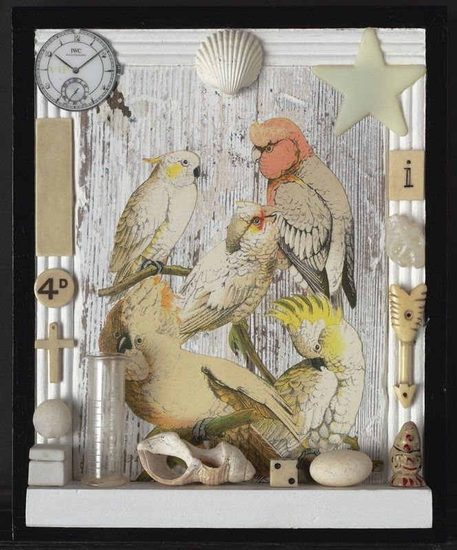 Homage to Joseph Cornell, Birds, 2010, Peter Blake