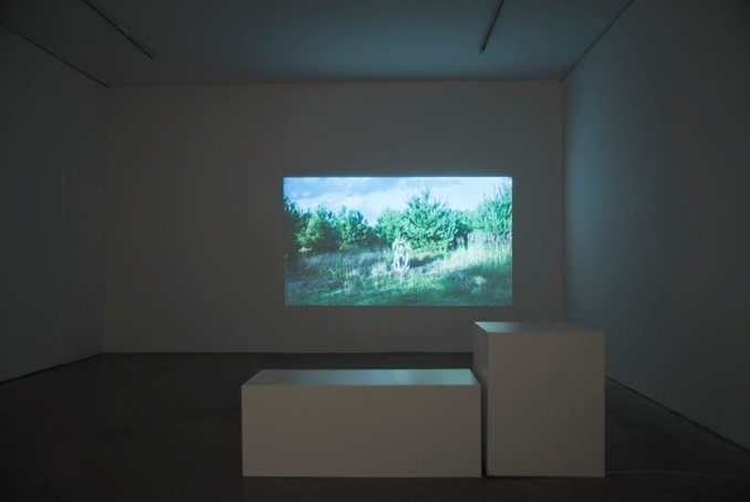 The Instability of the Image, installation view (6