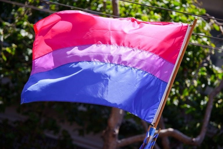Anti-same sex marriage group accidentally copy bisexual flag