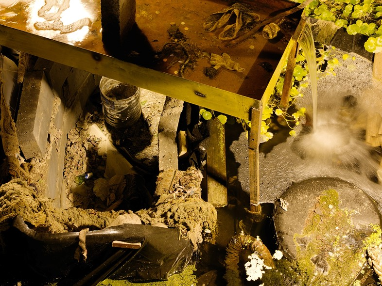 Pyrotechnics Trash And A Mechanical Garden Dazed