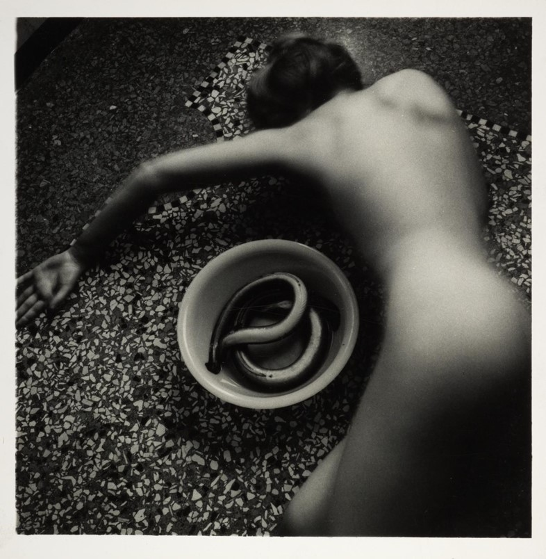 Francesca Woodman, Eel Series, Roma, May 1977 - August 1978