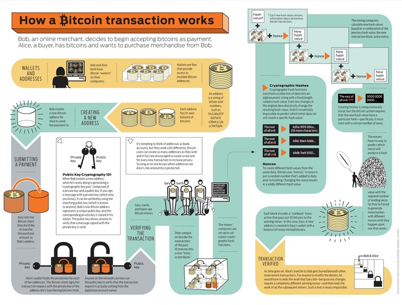 bitcoin-infographic_5029189c9cbaf