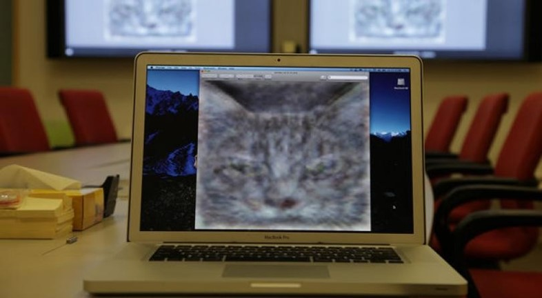 Googles-deep-learning-cat