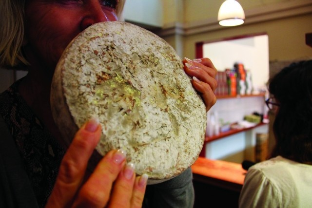 9) microbiome food - cheese