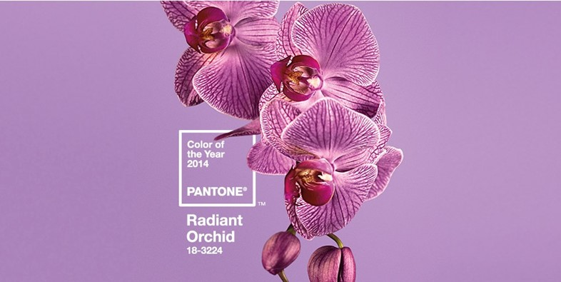 Radiant Orchid pantone