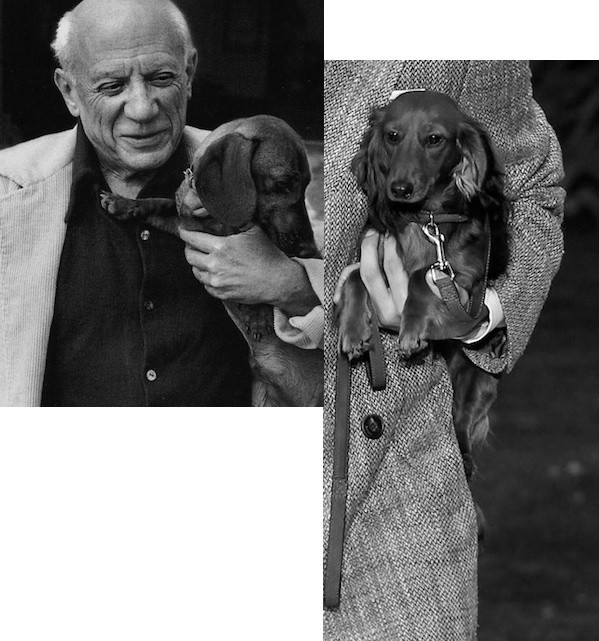 Deconstructing Paris Dazed Pablo Picasso Berluti