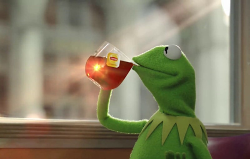 Image result for kermit drinking tea