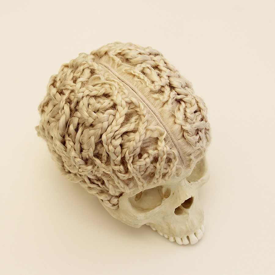 Hugh Hayden Untitled, 2012, skull, human hair and adhesive