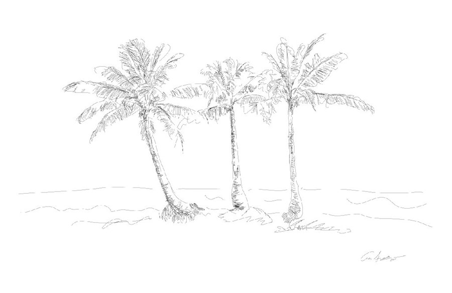 Three Palms, 2011